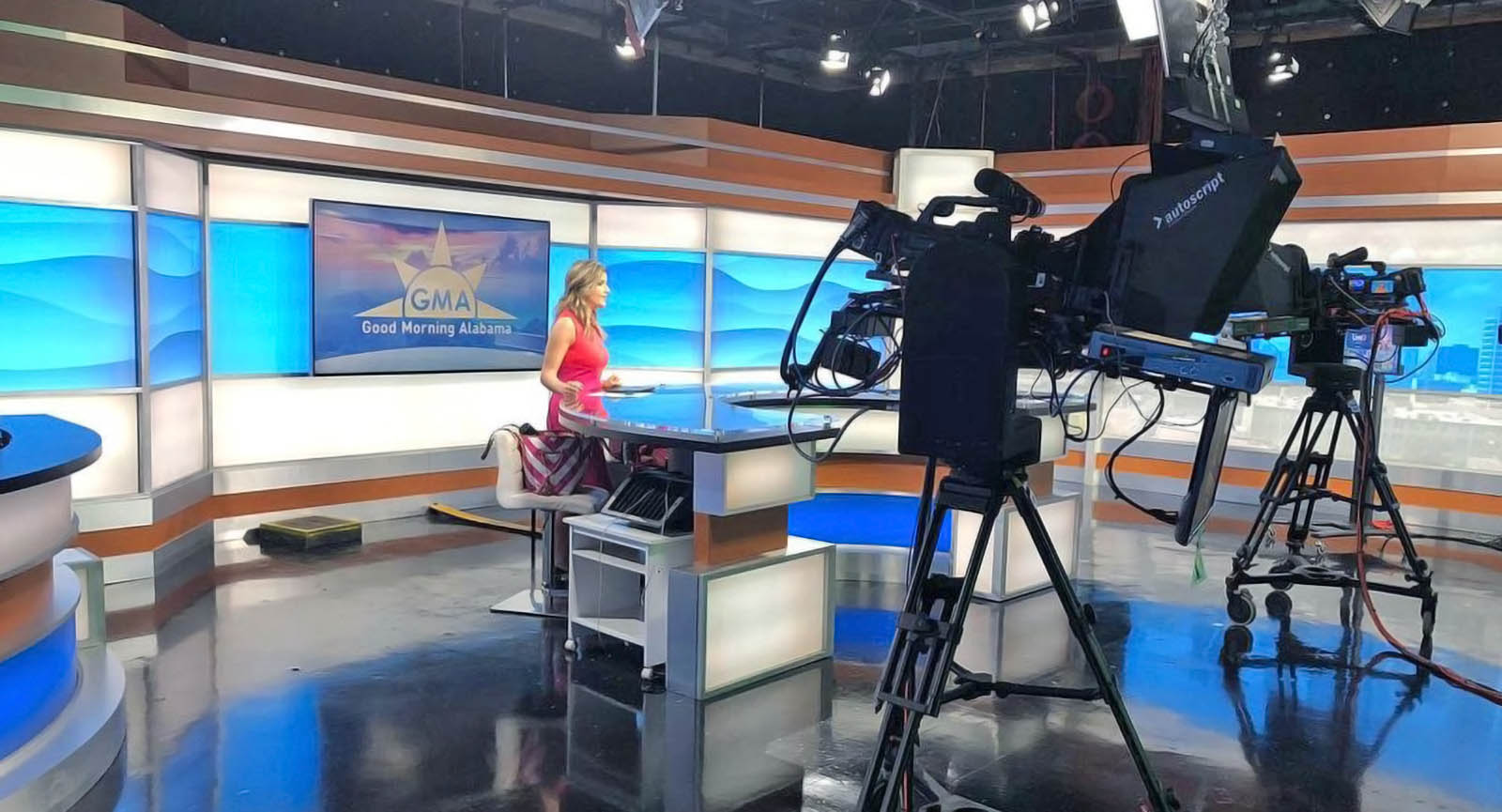 Sarah Snyder at ABC3340 news